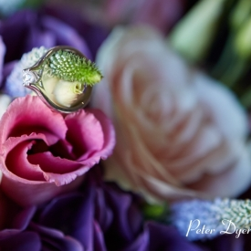 Channels Estate Wedding Photography_by Peter Dyer Photographs007