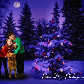 Christmas card studio shoot, Enfield_017
