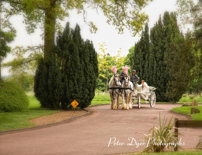 Turkish-wedding-photography-at-Fanhams-hall-Herfordshireby-Peter-Dyer-Photographs-north london_15