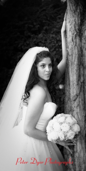 Royal-chace-hotel-wedding-photographby-Peter-Dyer-Photographs-North-London_4