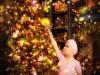 Christmas card studio shoot, Enfield_004