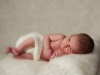 newborn photography enfield