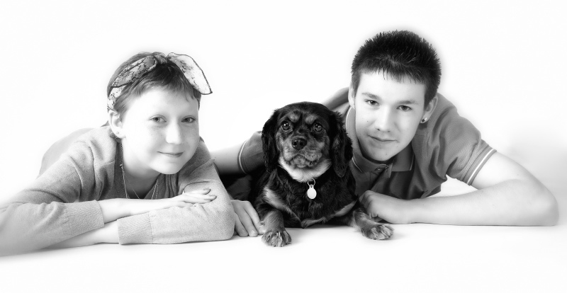 pet-photographer-in-enfield_084